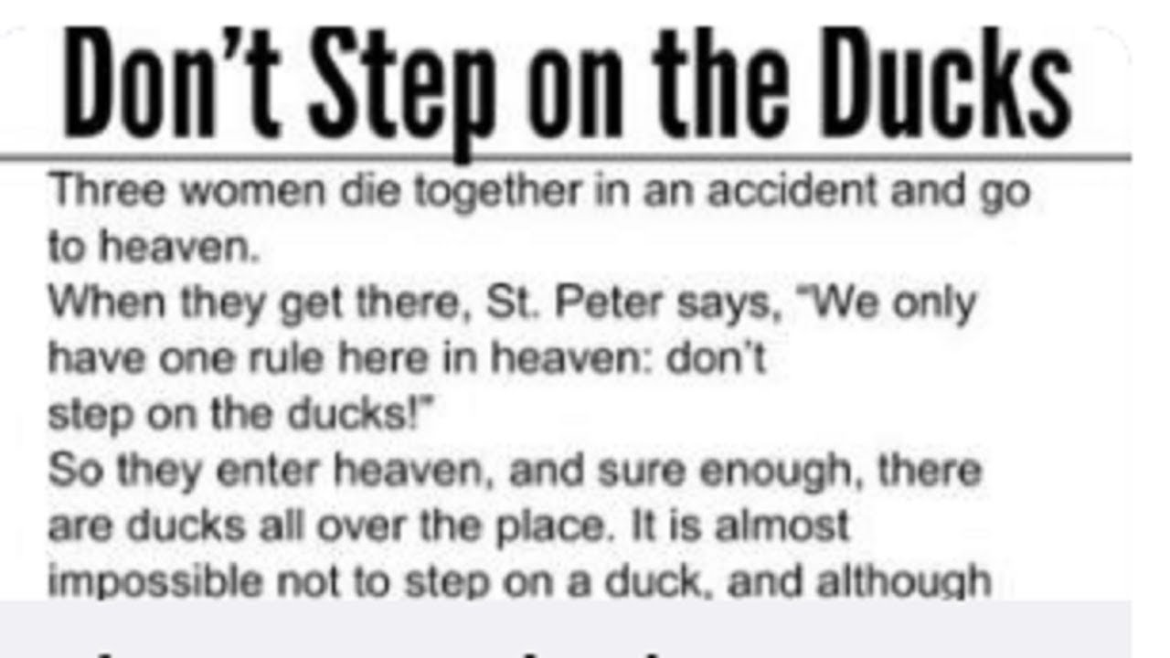 whatever-you-do-don-t-step-on-a-duck