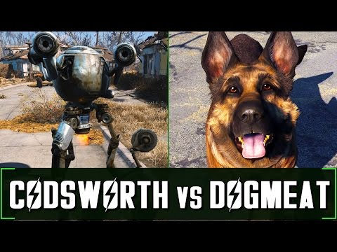 Fallout 4: Codsworth vs Dogmeat - Companion Comparison