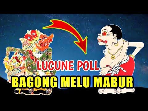 Bagong Melu Mabur Lucune Poll