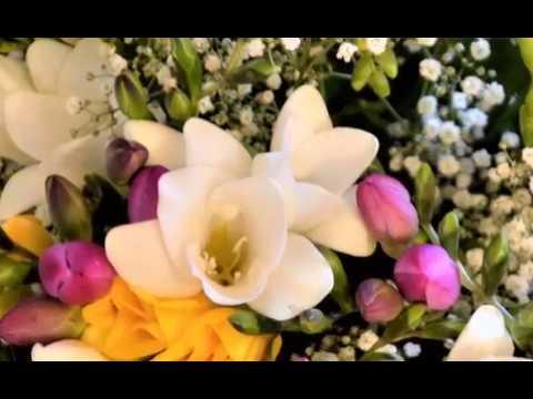 angelika névnapi köszöntő Névnapi köszöntő   Angelika   YouTube angelika névnapi köszöntő
