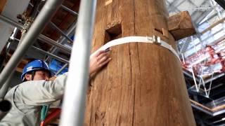 薬師寺東塔の木材年代測定。東塔の建立年代が明らかになる