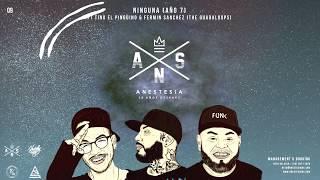 9.- ANESTESIA - NINGUNA FT TINO EL PINGÜINO & FERMIN (THE GUADALOOPS)