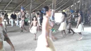 Tribo indígena Amazonia Luiza Marques