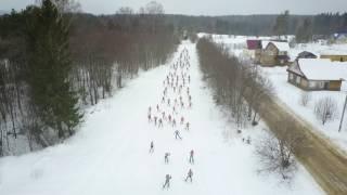 видео Бревно оцилиндрованное Вологодский лес Вожега