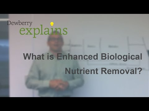 What is Enhanced Biological Nutrient Removal?
