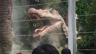 【USJ】Dinosaur Panic!_ダイナソー・パニック!