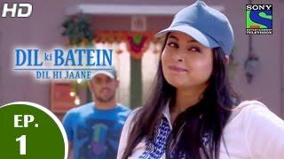 Dil Ki Baatein Dil Hi Jaane - दिल की बातें दिल ही जाने - Episode 1 - 23rd March 2015