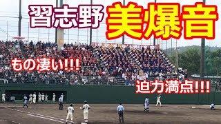【美爆音】習志野の応援がものすごい!!! 【秋季高校野球関東大会】