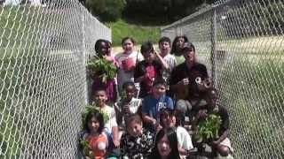 Bayview School Rain Garden Project