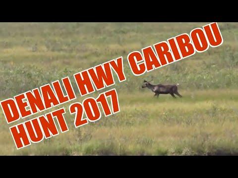 Caribou Hunt 2017