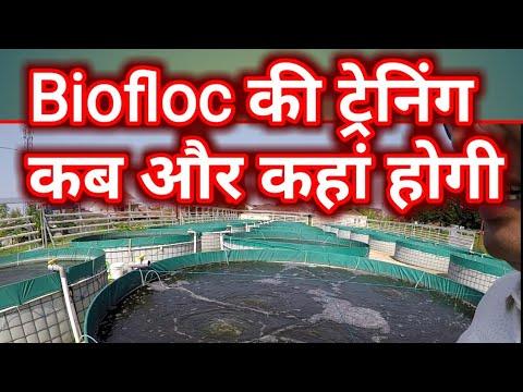 Biofloc की ट्रेनिंग को लेकर सवाल जवाब