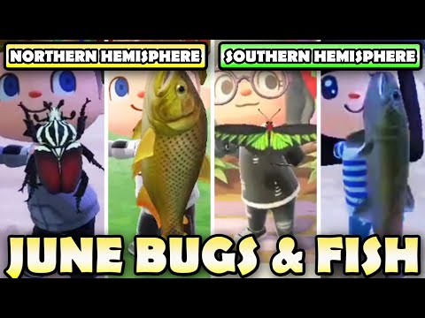 🐛🐟 ULTIMATE Bugs & Fish Guide For JUNE In Animal Crossing New Horizons | North & South Hemisphere!
