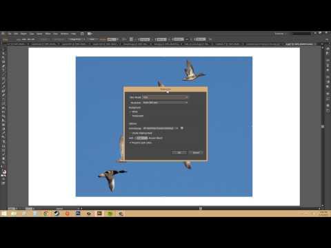 Adobe Illustrator CS6 for Beginners - Tutorial 78