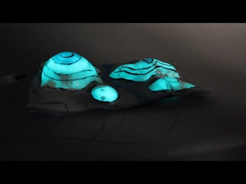 Octopus-Inspired Camouflage for Soft Robotics