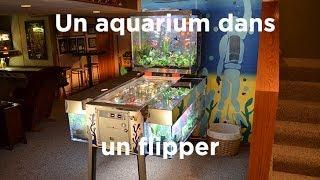 Un aquarium dans un flipper : Aquamen