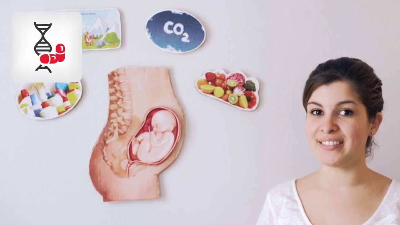 recherche pour femme enceinte