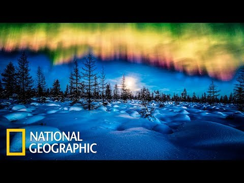 Дикая природа России: Заполярье | Фильм 3 из 6 | (National Geographic)