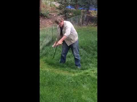 mowing with a scythe .Mähen mit der Sense