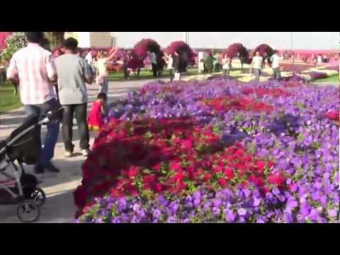 Meghna - Dubai Miracle Garden 22-02-2013