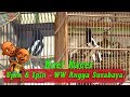 Kacer Upin Ipin Ww Angga Surabaya Tampil Di Piala Raja   Mp3 - Mp4 Download