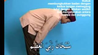 Video Tata Cara Shalat Wajib download MP3, 3GP, MP4, WEBM, AVI, FLV September 2018
