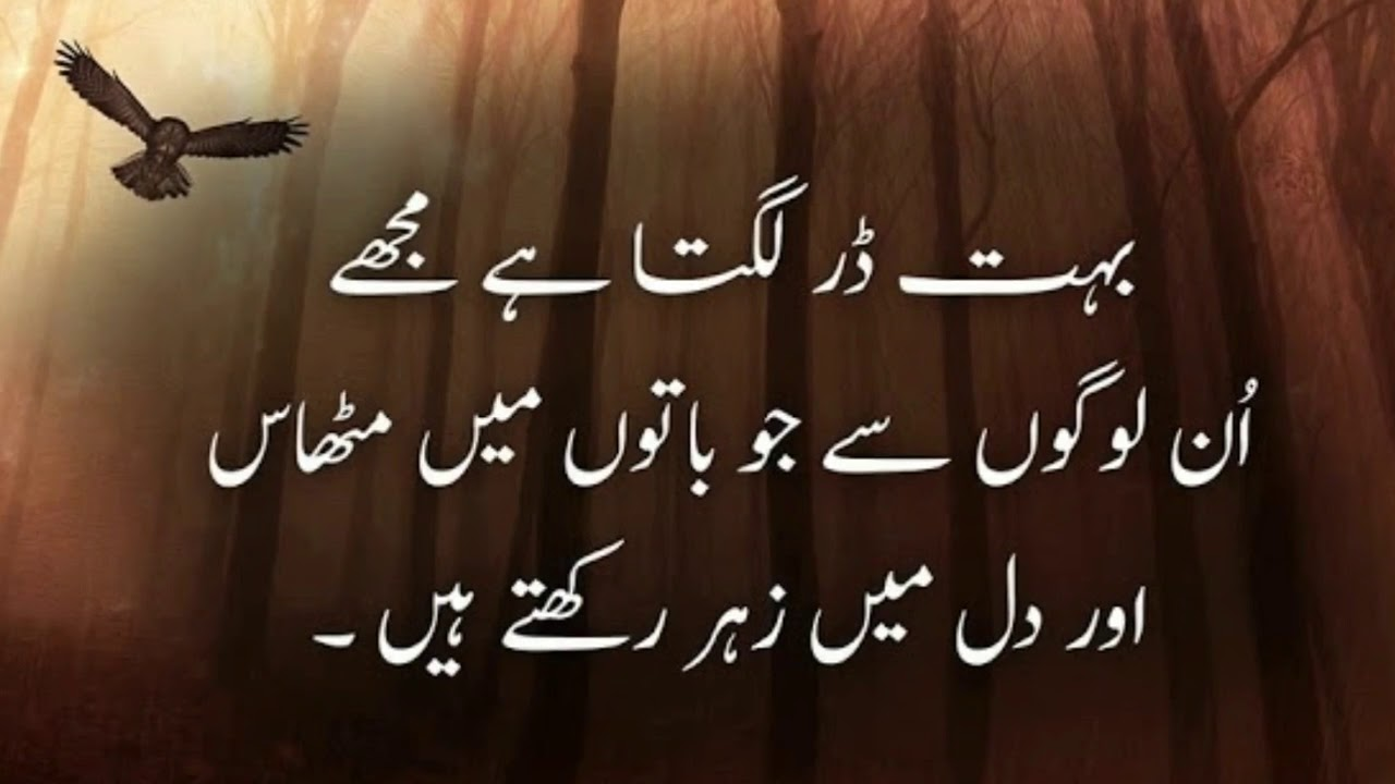 best ever friendship quotes in urdu and hindi mashoor