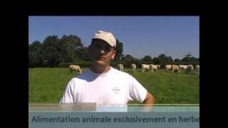 Vertal: comment valoriser la ration de vos bovins au quotidien ?