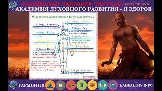 Славянская девятеричная вихревая (чакровая) энергетическая система организма человека