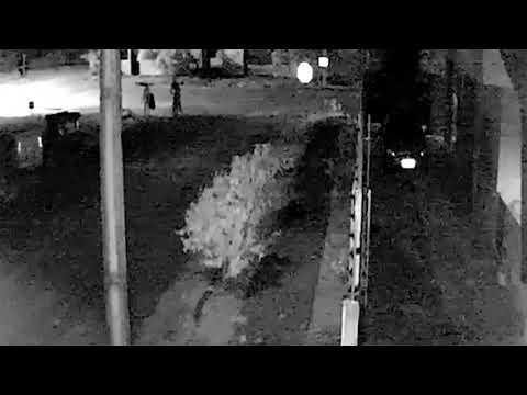 Vídeo mostra mãe de PM fugindo de bandido antes de ser brutalmente assassinada