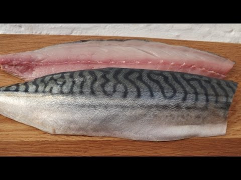 How To Fillet A Mackerel.And Cook It In Real Time.Mackerel.