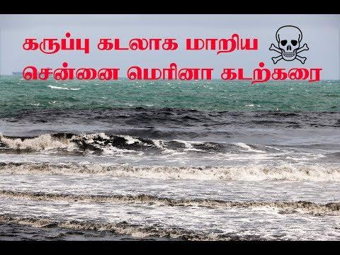 கருப்பு கடலாக மாறிய சென்னை மெரினா|Chennai Marina The Black Sea|Tamil Galatta News