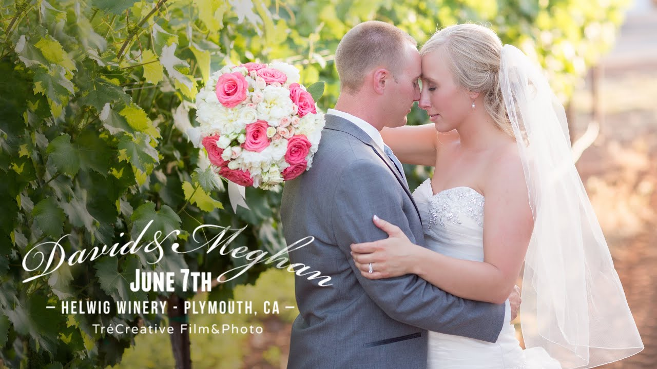 Gorgeous Winery Wedding At Helwig Plymouth Ca David