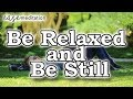 EP82 - Peace - Deep Relaxation - Without Music - by Ease Meditation