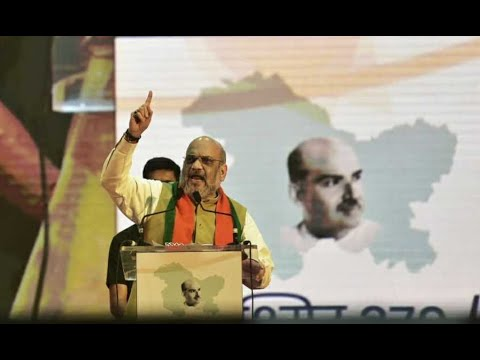 'Rahul Gandhi sees politics in Kashmir move, BJP saw patriotism': Amit Shah