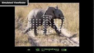 Canon 5D Mark III - Öğretici AF Alan Seçimi 1/14
