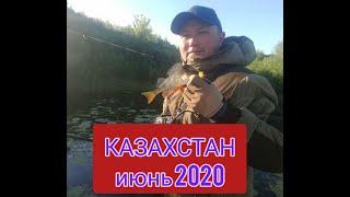 Рыбалка Нур Султан июнь 2020 Прогулка со спиннингом по берегу на вечерке