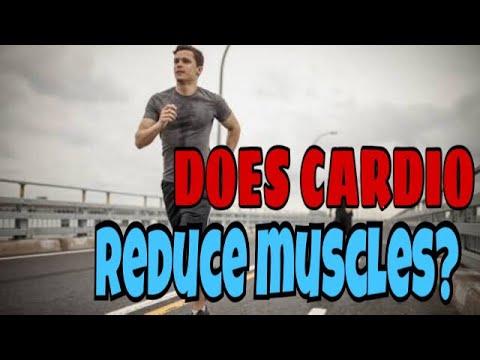 DOES CARDIO REDUCE MUSCLES ? | HINDI | NAGPUR