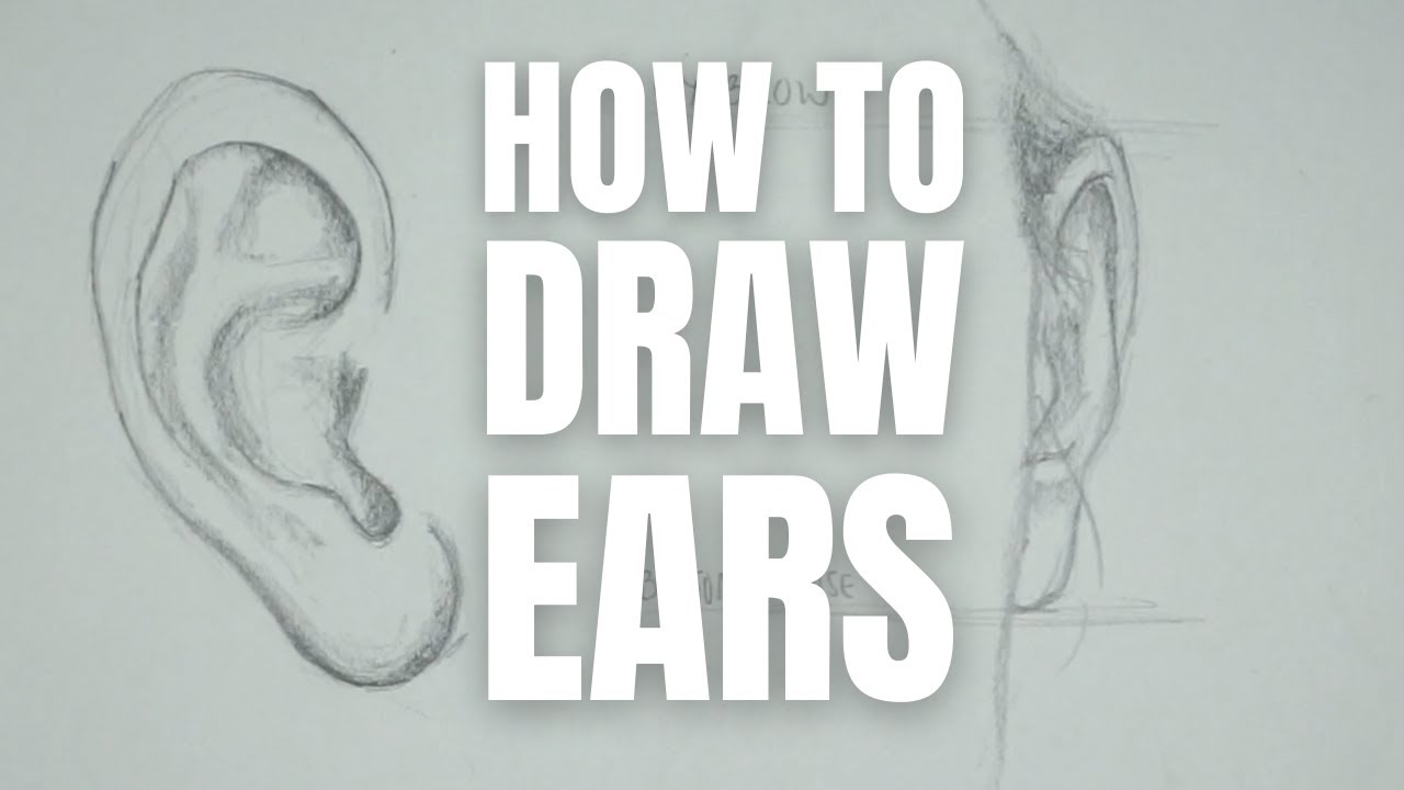 How to Draw Ears (UPDATE!)