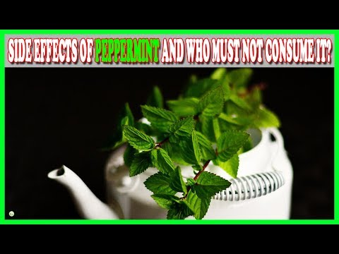 Side Effects Of Peppermint And Who Must Not Consume It? | Best Home Remedies