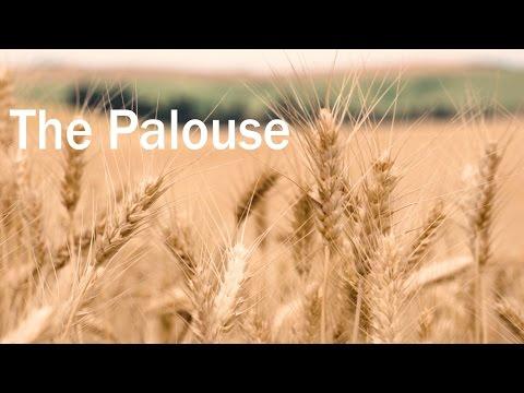 The Beautiful Palouse