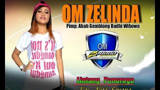 Video Nita Savana OM ZELINDA Lintang Ponorogo live Jambangan download MP3, 3GP, MP4, WEBM, AVI, FLV Maret 2017