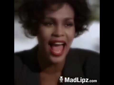 Whitney Houston-  Always Love You Parody