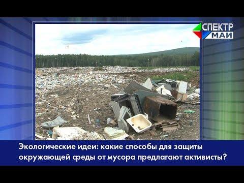 Экологические идеи: какие способы для защиты окружающей среды от мусора предлагают активисты?