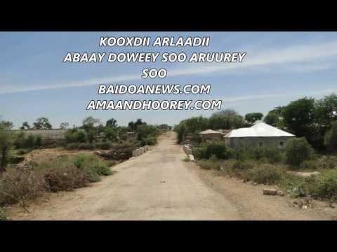 KOOXDII ARLAADI - ABAAY DOWEEY SOO ARUUREY