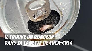 فأر داخل علبة مياه غازية بفرنسا  .. فيديو