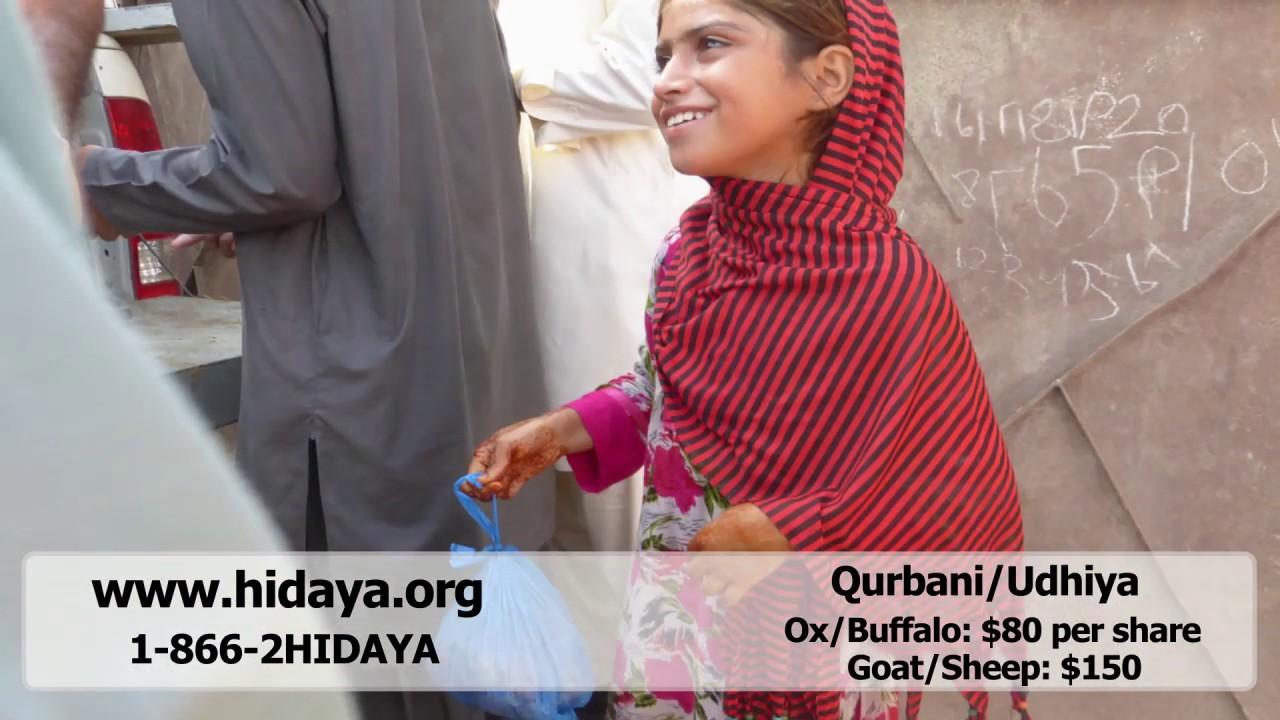 Qurbani - Hidaya Foundation