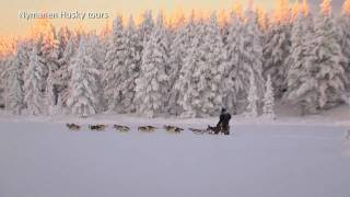 Nymanen Husky tours is one of the most beautiful places to drive do...