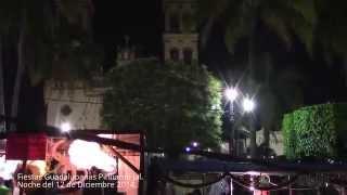 Fiestas Guadalupanas de Pihuamo Jalisco, Noche del 12 de Diciembre 2014