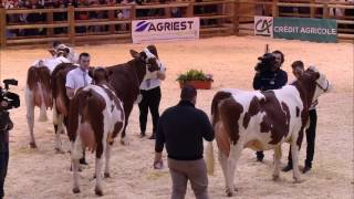Replay - CONCOURS MONTBELIARDE Lundi 26 fevrier