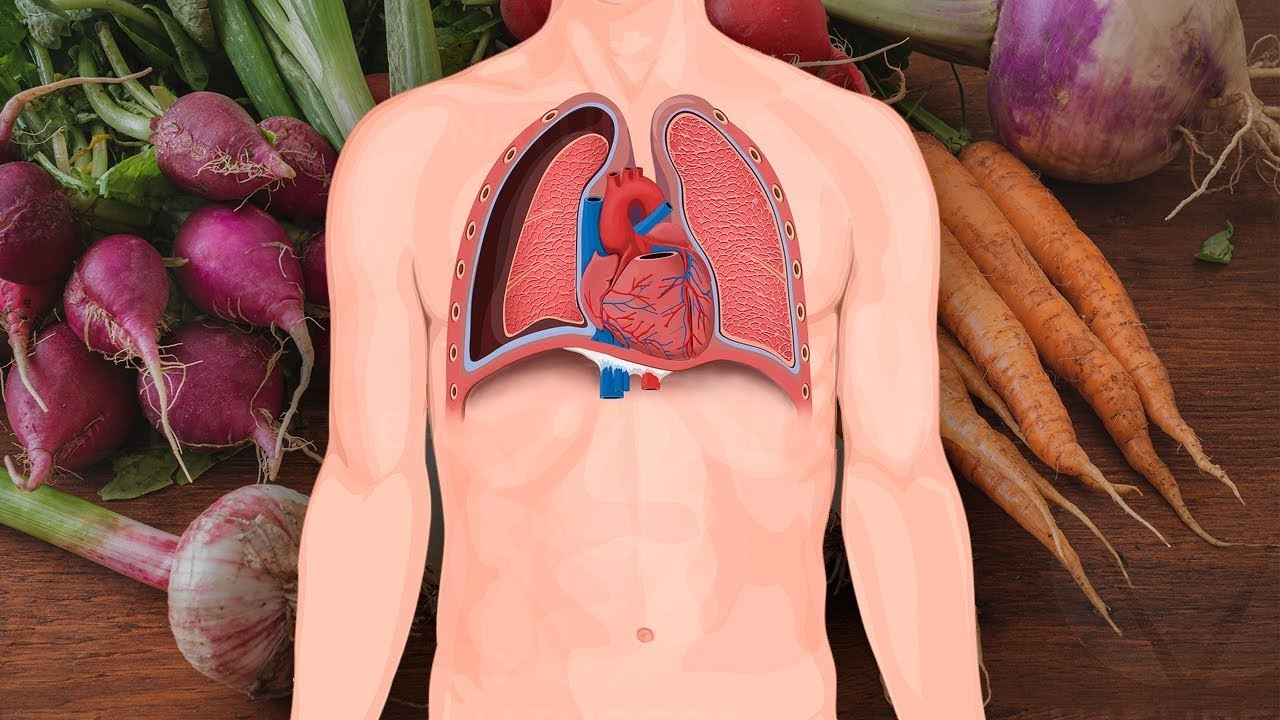 7 Foods for Healthy Lungs and Improved Breathing